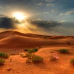 desert0813-12