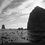 Summer sewage at Cannon Beach